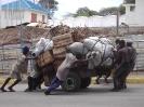 Fähre Mombasa nach der Südseite_4