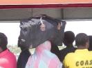 Fähre Mombasa nach der Südseite_5